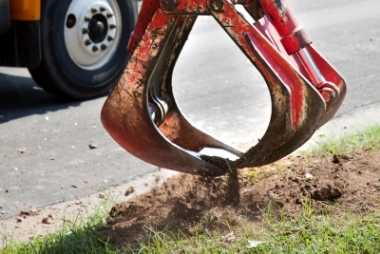 buffalo tree service stump removal
