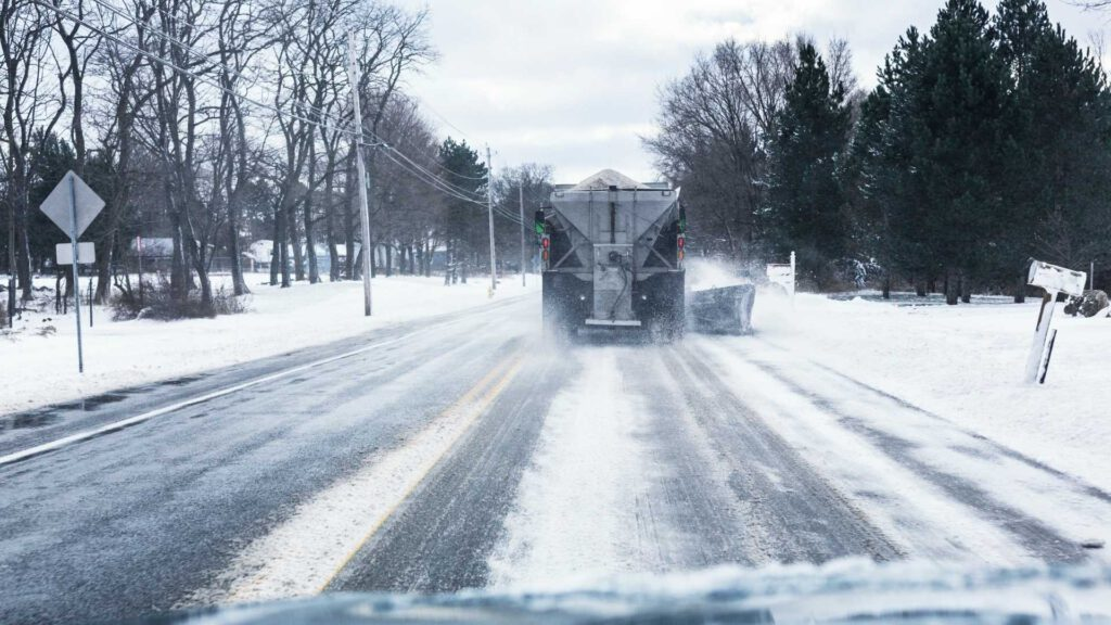How Does Road Salt Affect The Environment Around My Trees