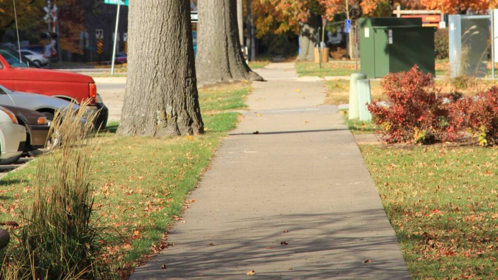 Tips For Planting Trees Around Your Sidewalk